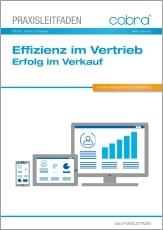 Download Whitepaper Vertriebseffizienz